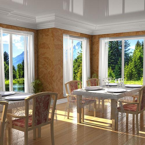 dinner_room_scene